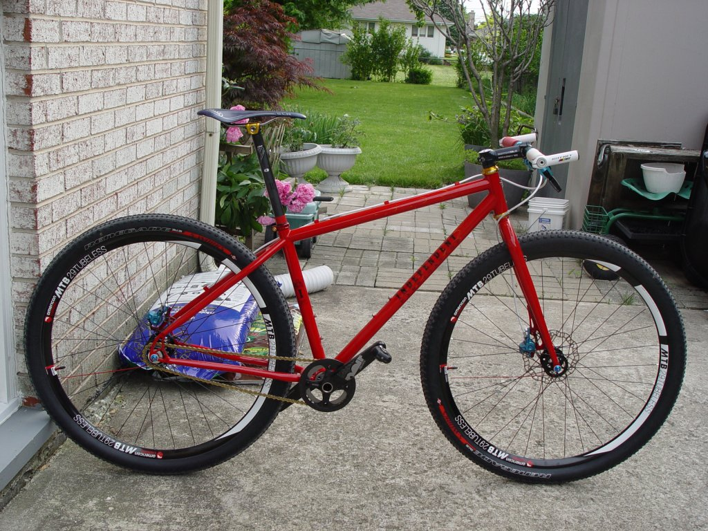 Post pics of your FULLY RIGID SS 29er-dsc00752.jpg