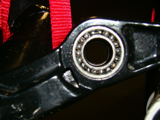 Remedy, Fuel and other Trek full suspension owners: Check your pivot bearings!-dsc00846.jpg