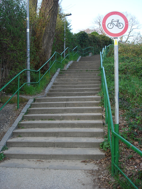 Best bike lane sign ever-dsc00850.jpg