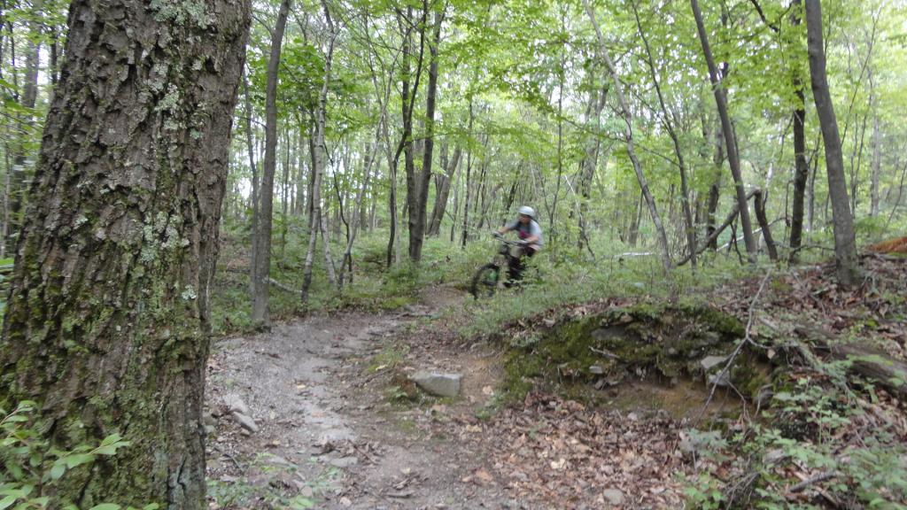 downhilling !!!!!-dsc00966.jpg