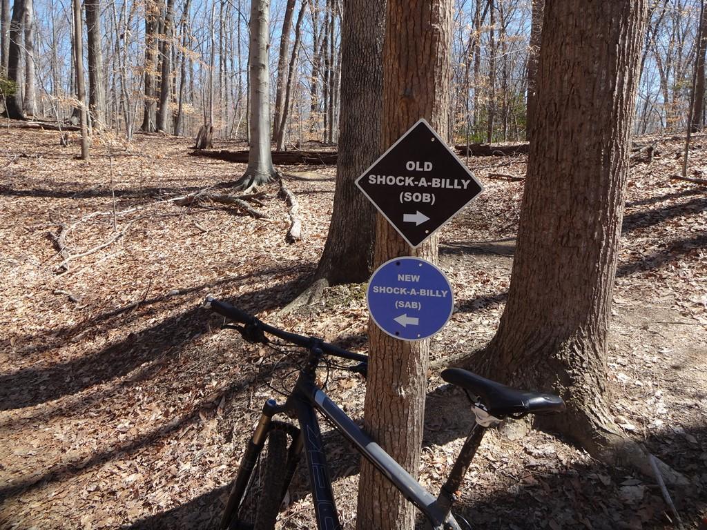 Bike + trail marker pics-dsc01096x.jpg