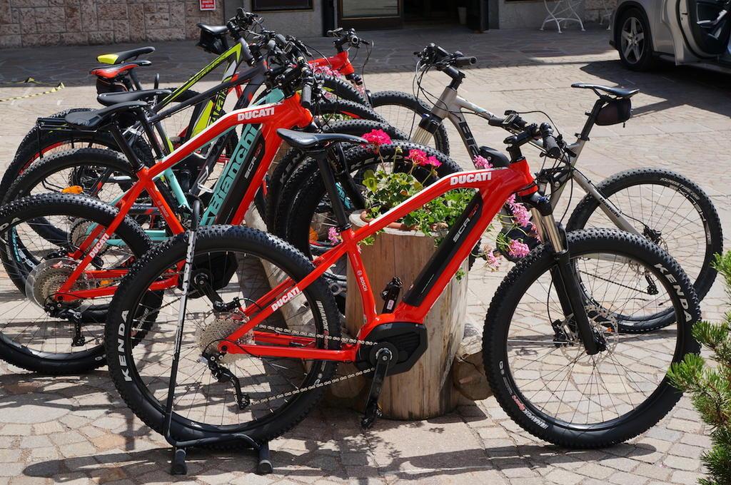Fat Biking and health-dsc01152.jpg