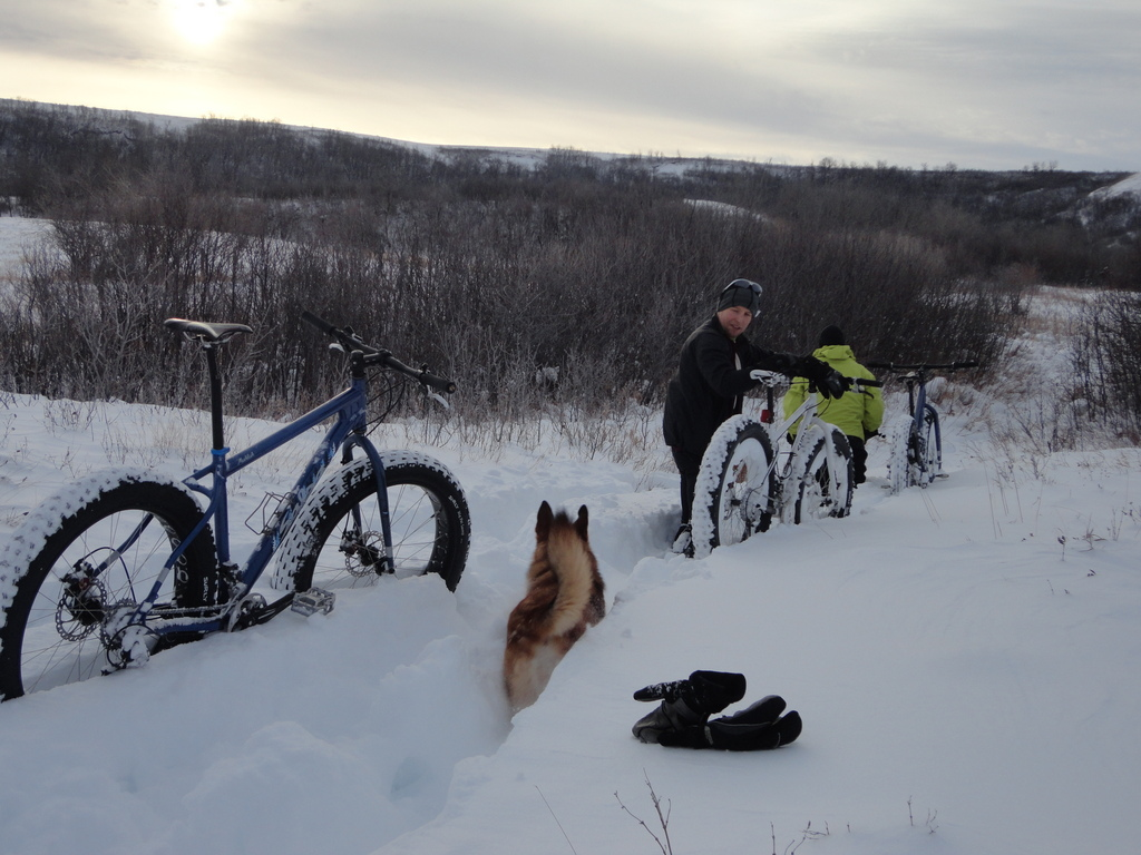 Your Latest Fatbike Related Purchase (pics required!)-dsc01380.jpg