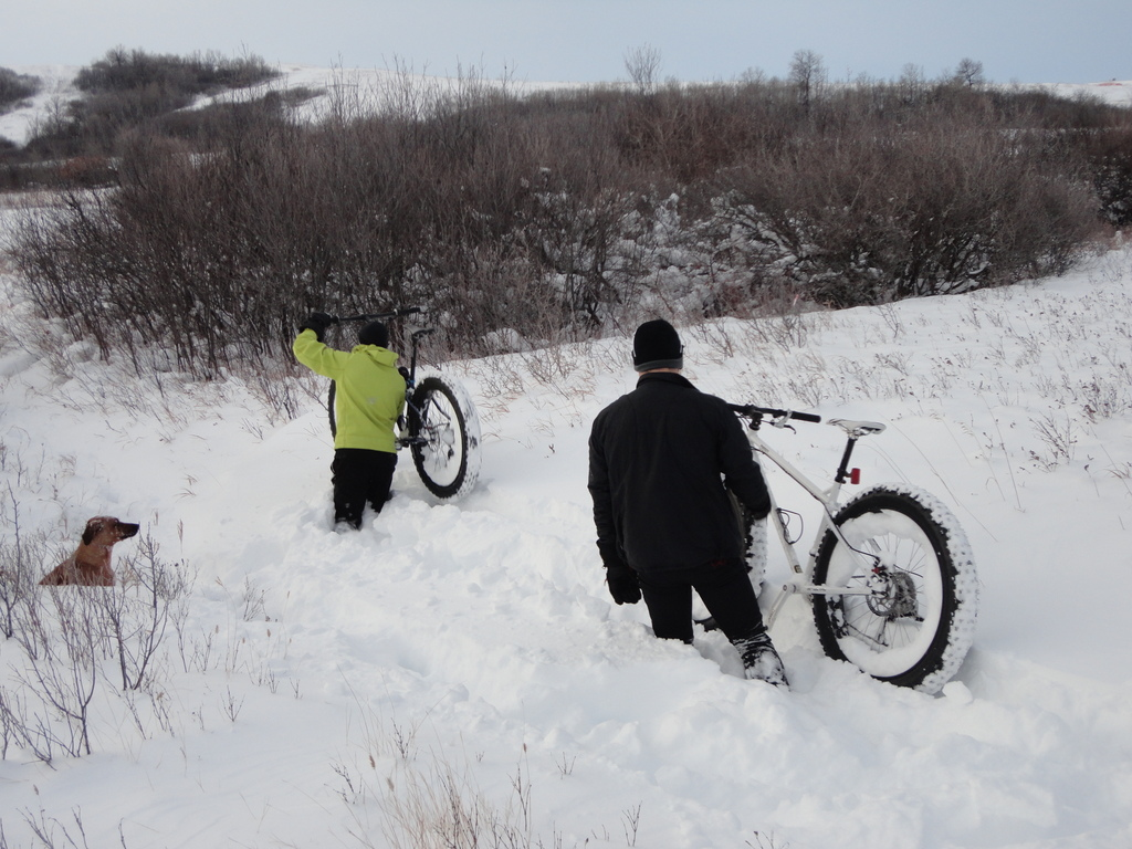 Your Latest Fatbike Related Purchase (pics required!)-dsc01381.jpg