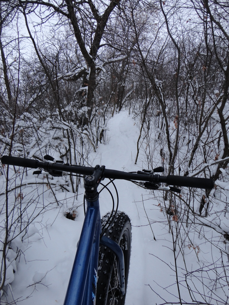 official global fatbike day picture & aftermath thread-dsc01421.jpg