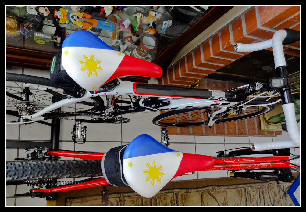 Philippines saddle, where can I find this??-dsc01471.jpg