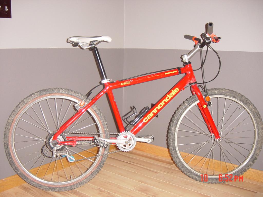 1995 Beast of the East Rider- Warning Pedestrian Bike Content-dsc01550-2a.jpg