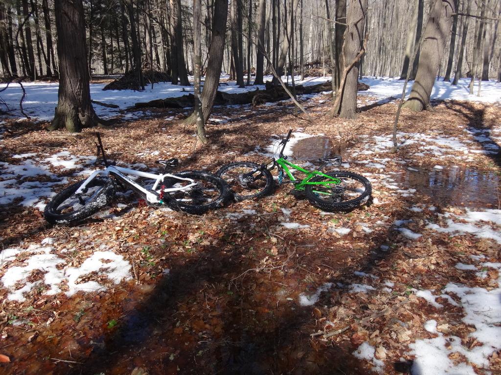Local Trail Rides-dsc01682_zpsyrwlcc57.jpg