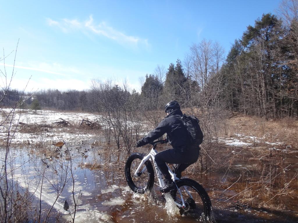 Local Trail Rides-dsc01699_zpsxvzpr49f.jpg