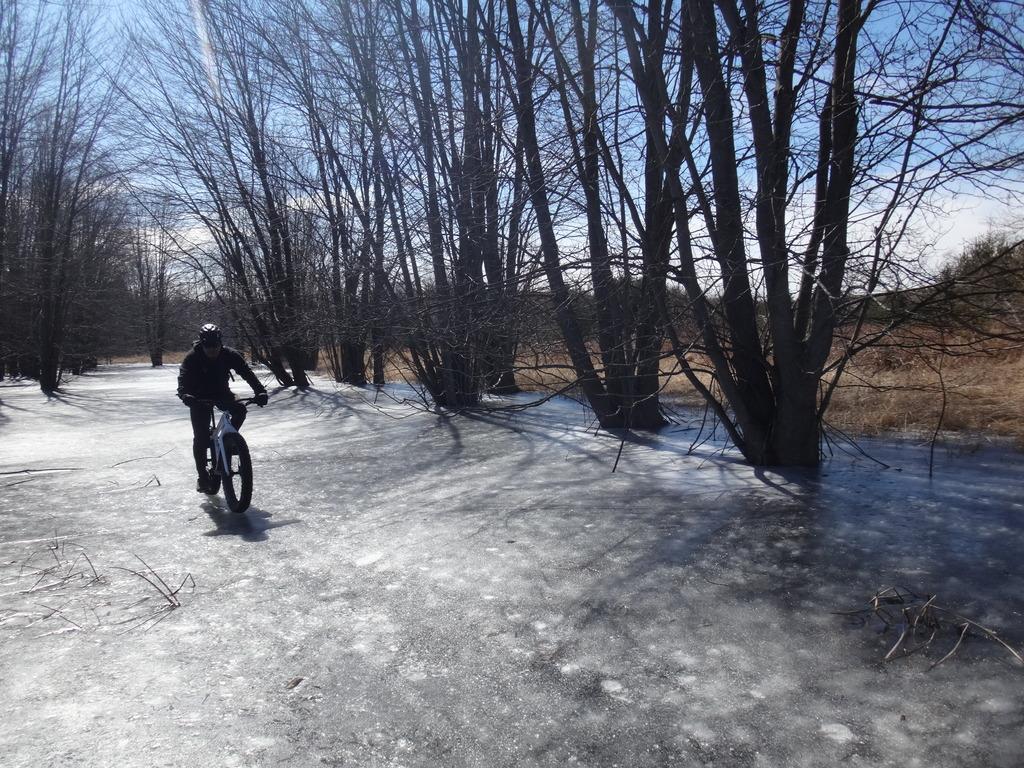 Local Trail Rides-dsc01850_zps1la45h1s.jpg