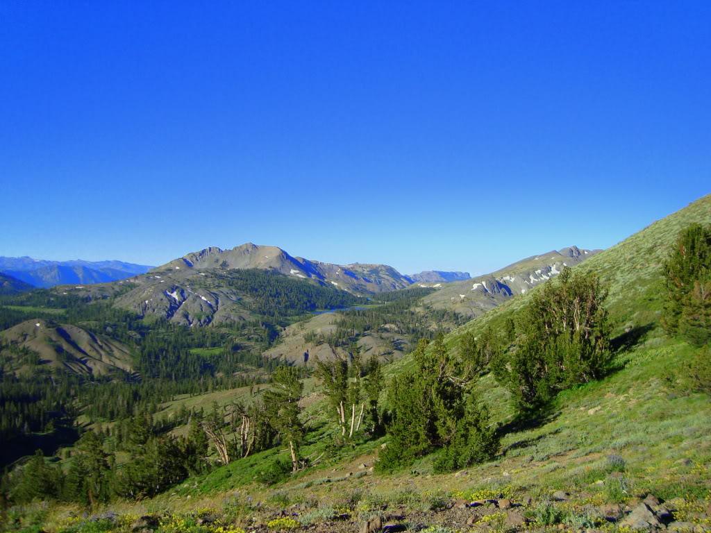 Trail Pics-dsc01969-1.jpg