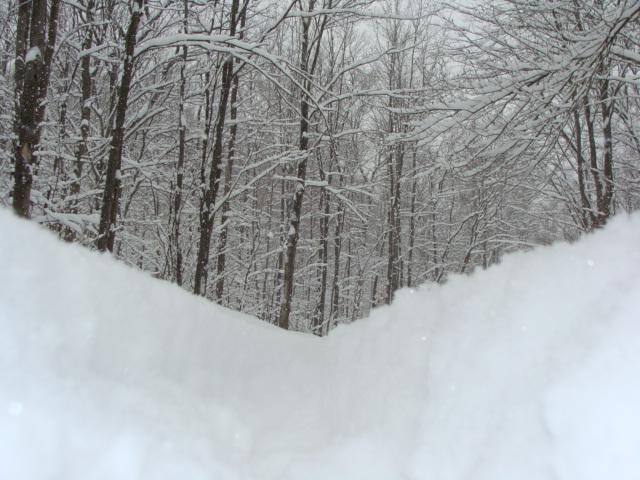 Snow Kidding? 2/25/10 Thursday Ride Snowpocalypse-dsc02078.jpg