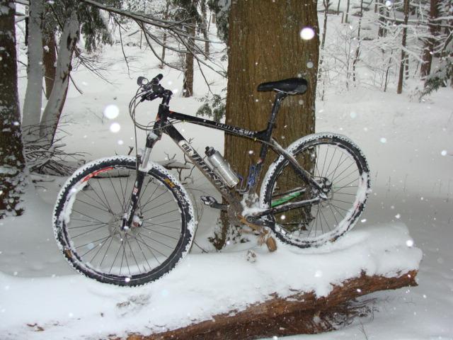 Snow Kidding? 2/25/10 Thursday Ride Snowpocalypse-dsc02079.jpg
