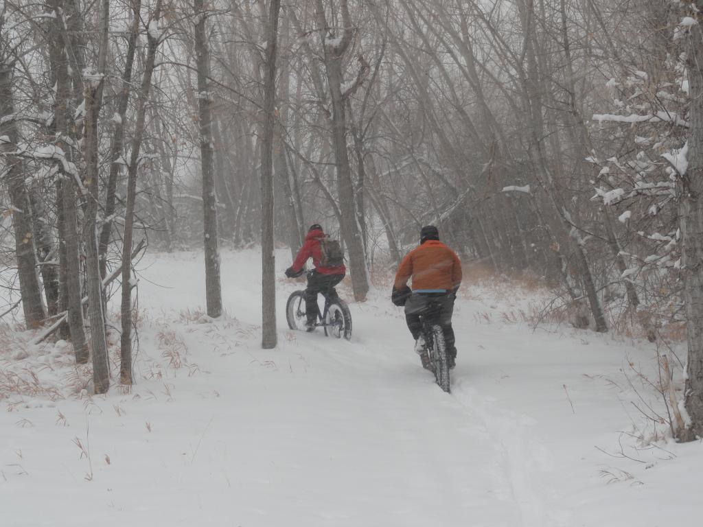 Blizzard At Bear Creek-dsc02446.jpg
