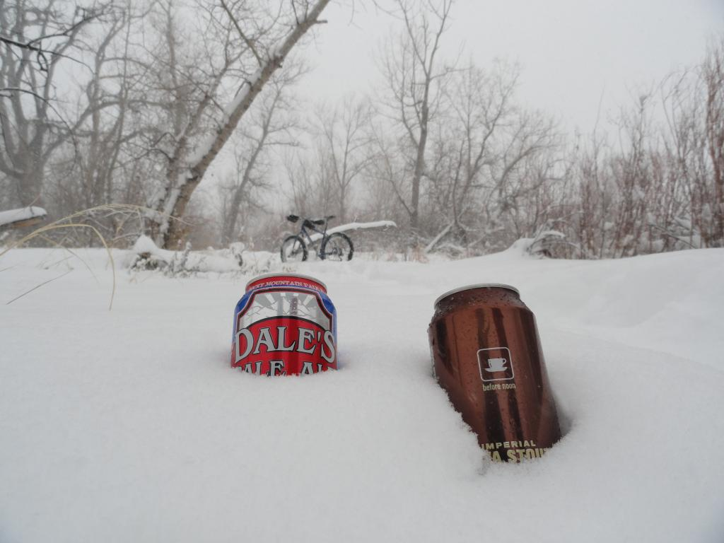 Blizzard At Bear Creek-dsc02447.jpg
