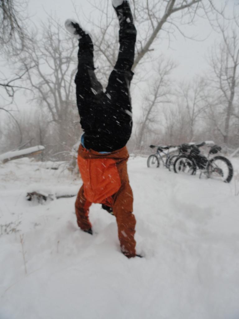 Blizzard At Bear Creek-dsc02453.jpg