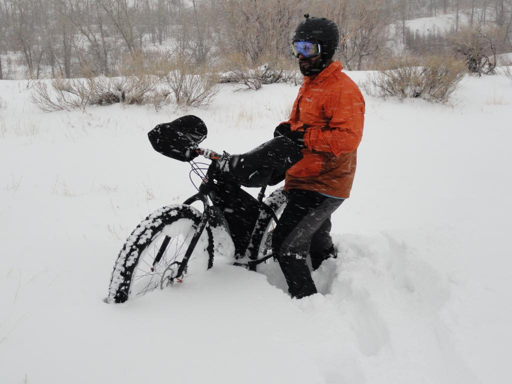 Blizzard At Bear Creek-dsc02454.jpg