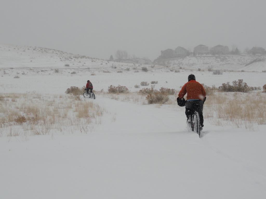 Blizzard At Bear Creek-dsc02457.jpg