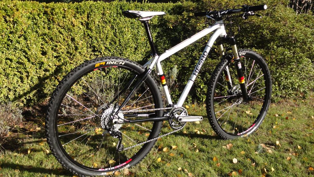 Anybody ride a Kesho frame?-dsc02877.jpg