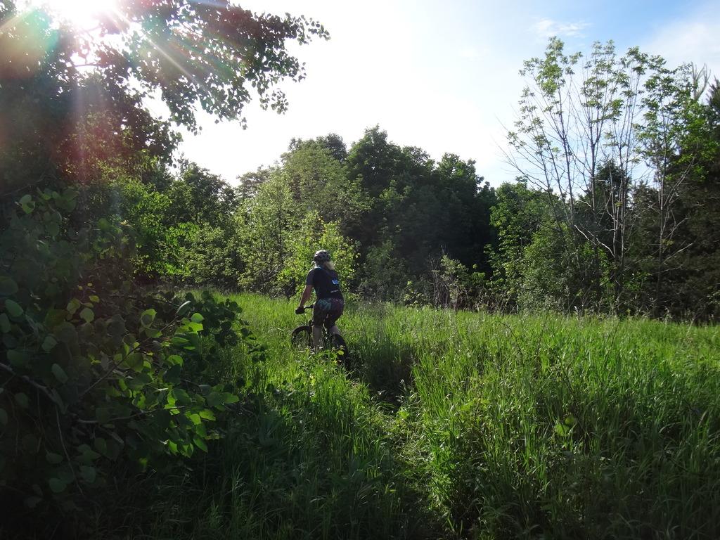 Local Trail Rides-dsc03097_zpsnsltqazp.jpg