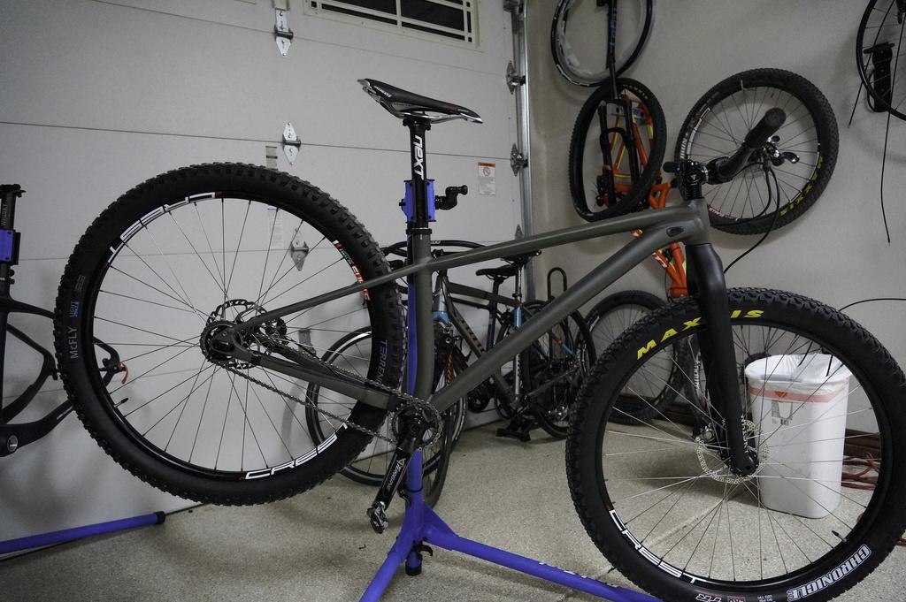 singlespeed bikes and frames 2019-20-dsc03487.jpg