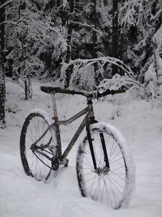 Triton Bikes. Titanium frames handmade in Russia. Anyone? :)-dsc03565_x.jpg