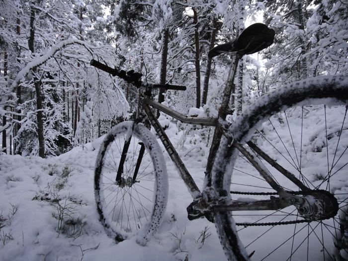 Triton Bikes. Titanium frames handmade in Russia. Anyone? :)-dsc03593_x.jpg