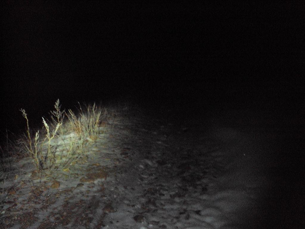Taking In The Scottish 2!!! t.I.t.s. Night ride!!!-dsc03821.jpg