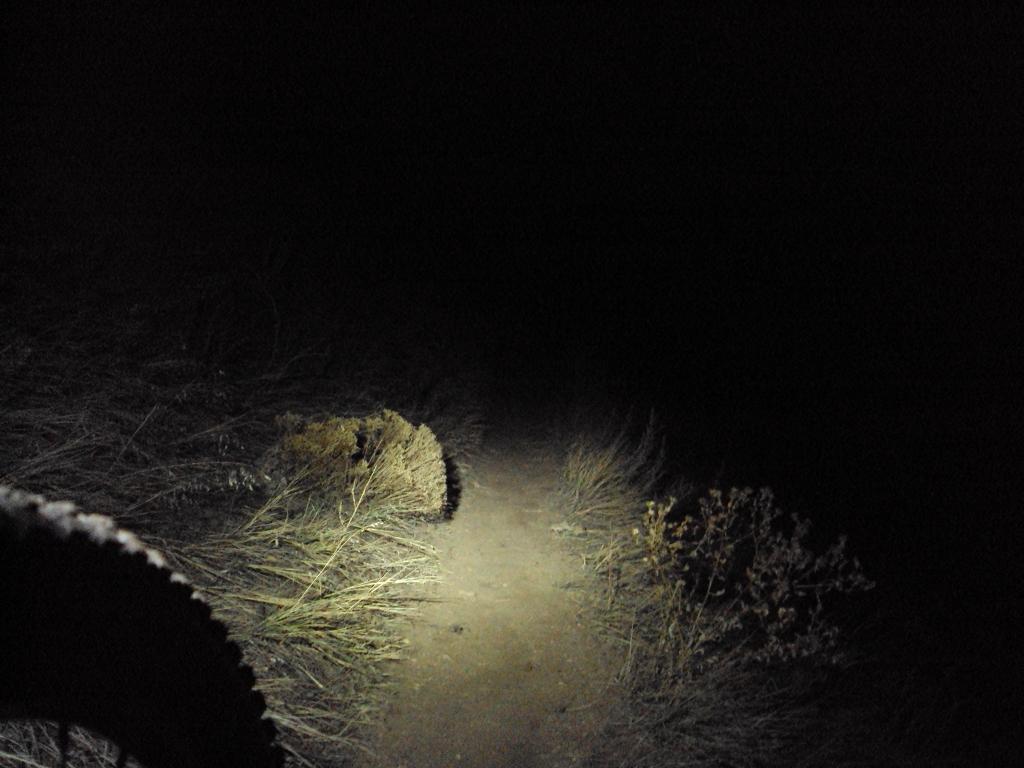 Thursday In Tebows Shadow!! T.I.T.S. night ride!!-dsc03849.jpg