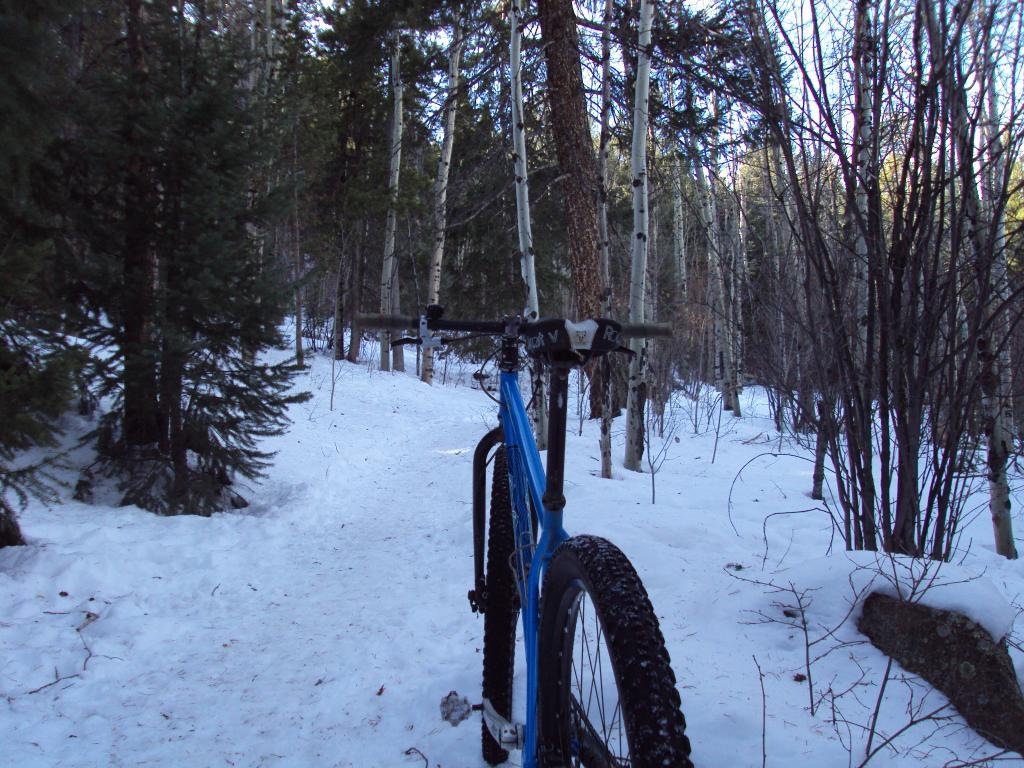 Trails for snow bikes-dsc03928.jpg