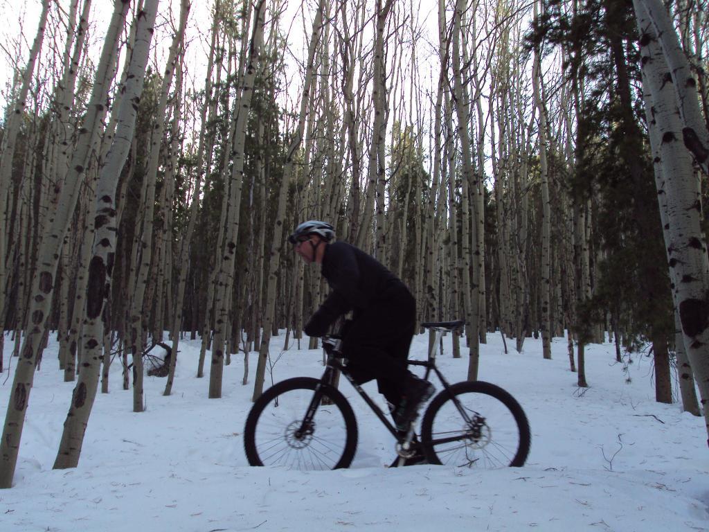 Trails for snow bikes-dsc03933.jpg