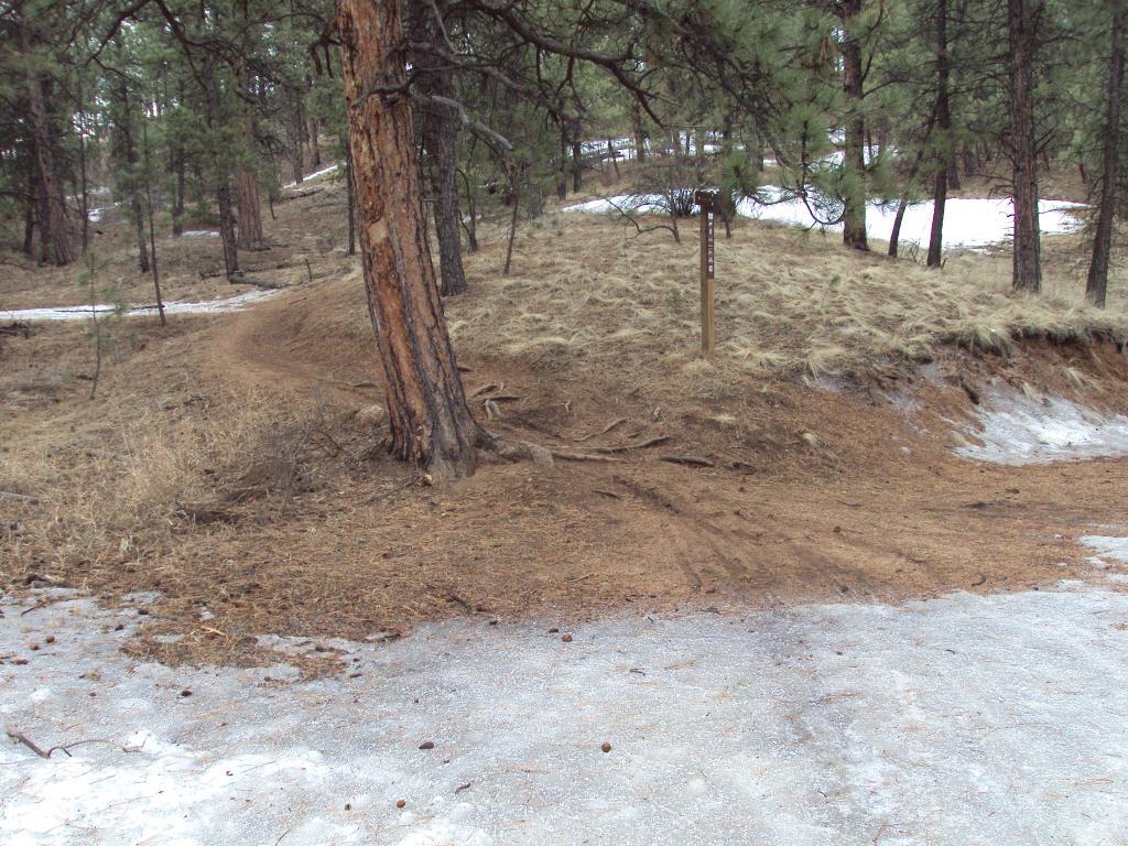 Buffalo Creek / Pine Valley Ranch-dsc04139.jpg