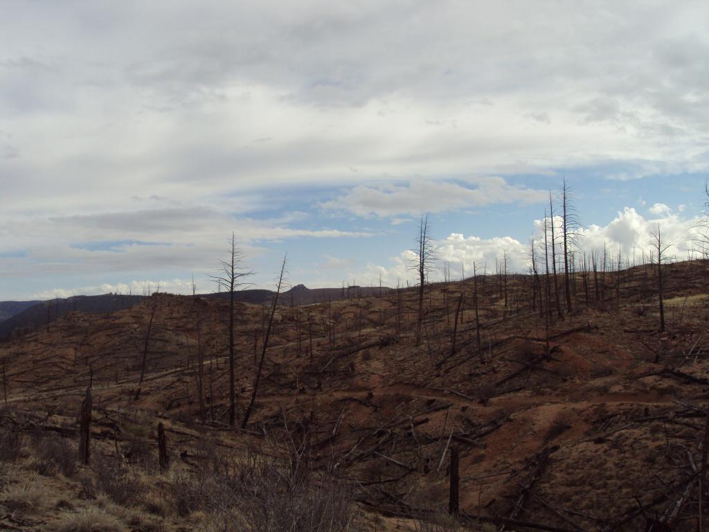 Buffalo Creek / Pine Valley Ranch-dsc04141.jpg
