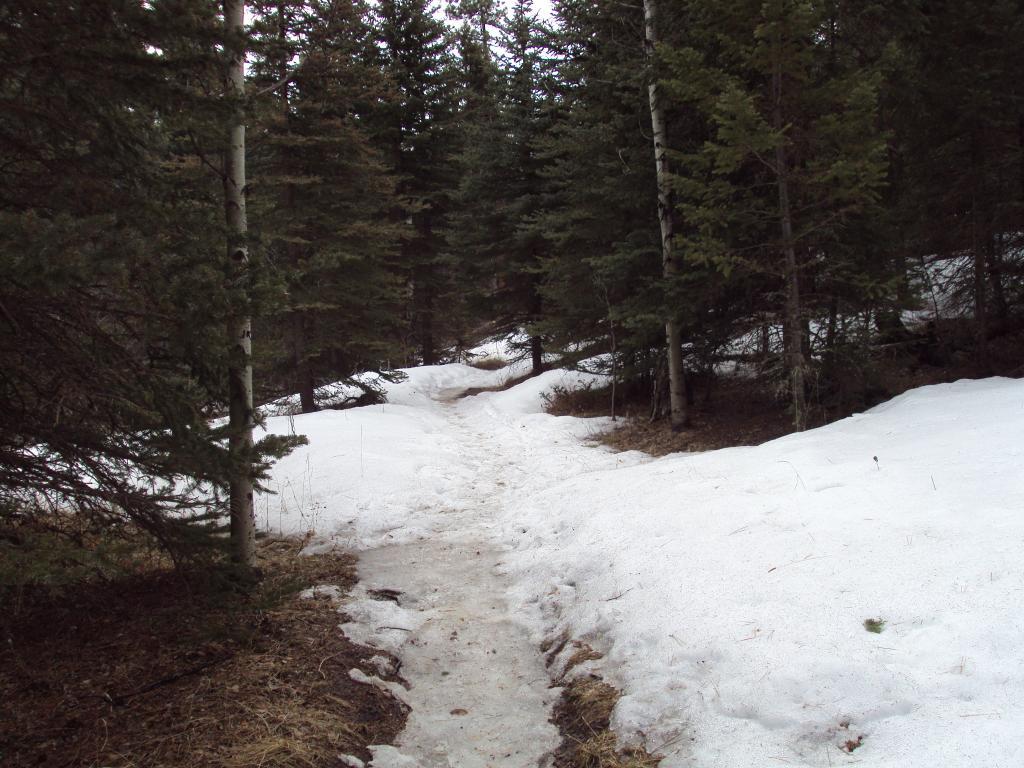 Buffalo Creek / Pine Valley Ranch-dsc04151.jpg