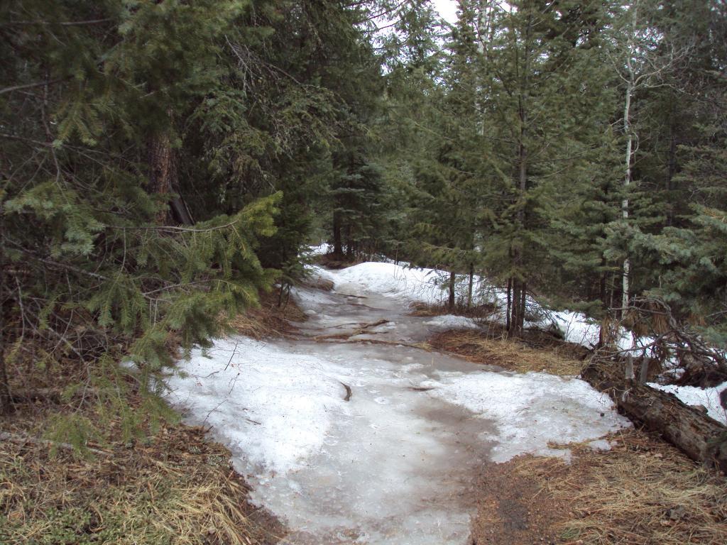 Buffalo Creek / Pine Valley Ranch-dsc04152.jpg