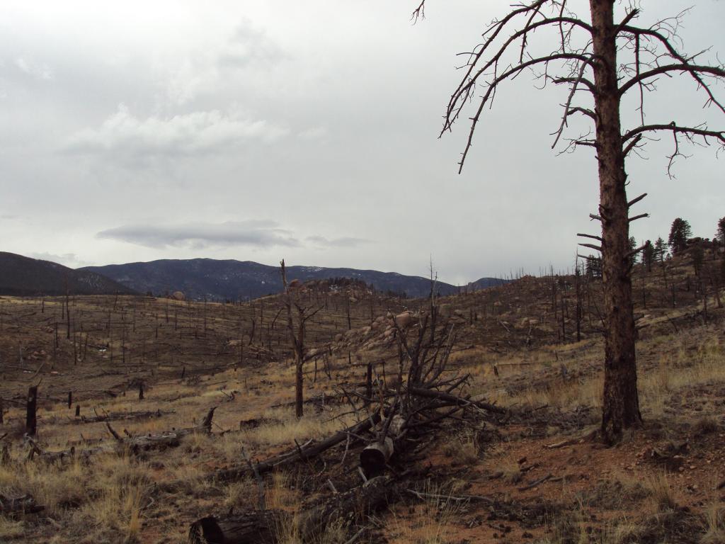 Buffalo Creek / Pine Valley Ranch-dsc04156.jpg