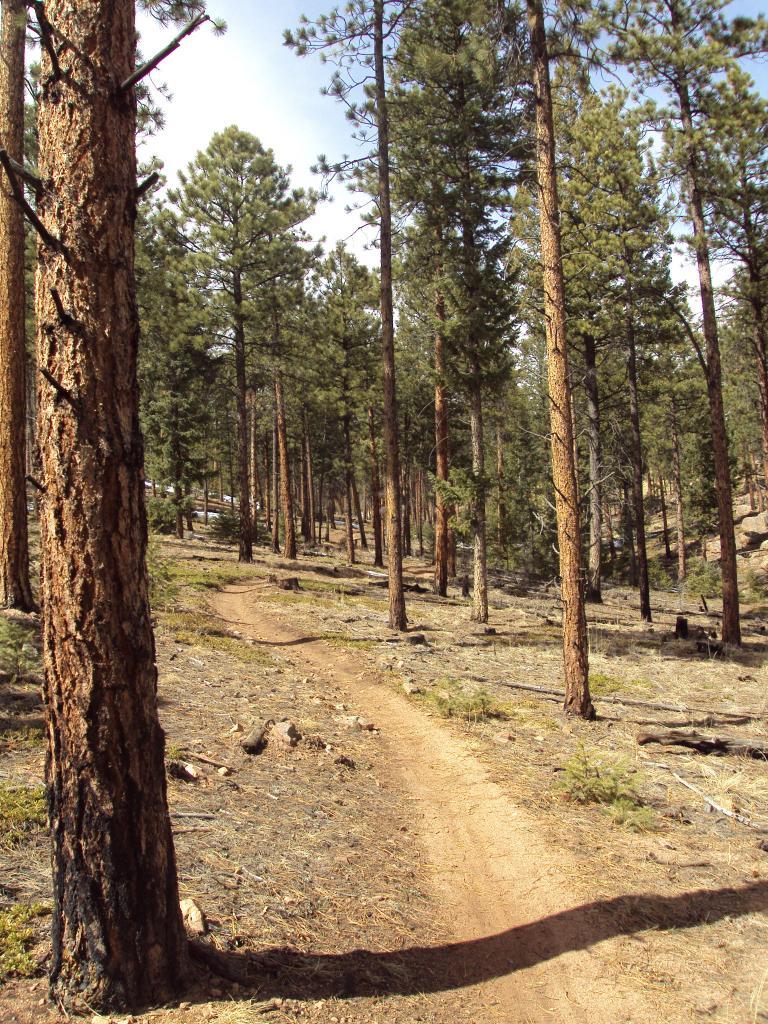 Buffalo Creek / Pine Valley Ranch-dsc04160.jpg