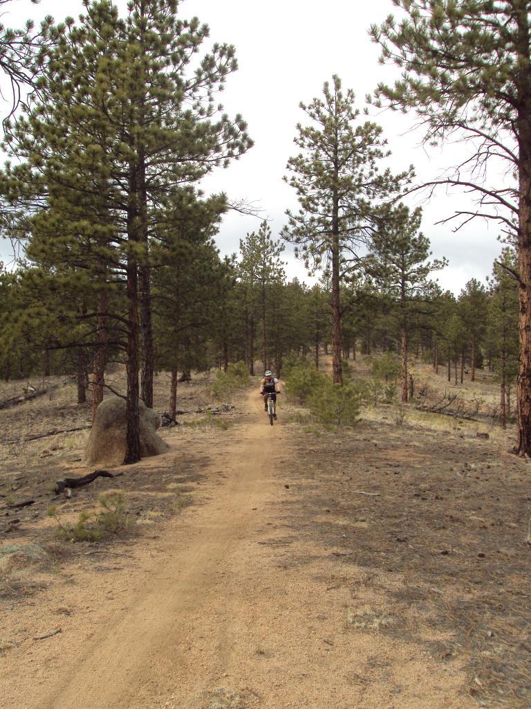 Buffalo Creek / Pine Valley Ranch-dsc04163.jpg