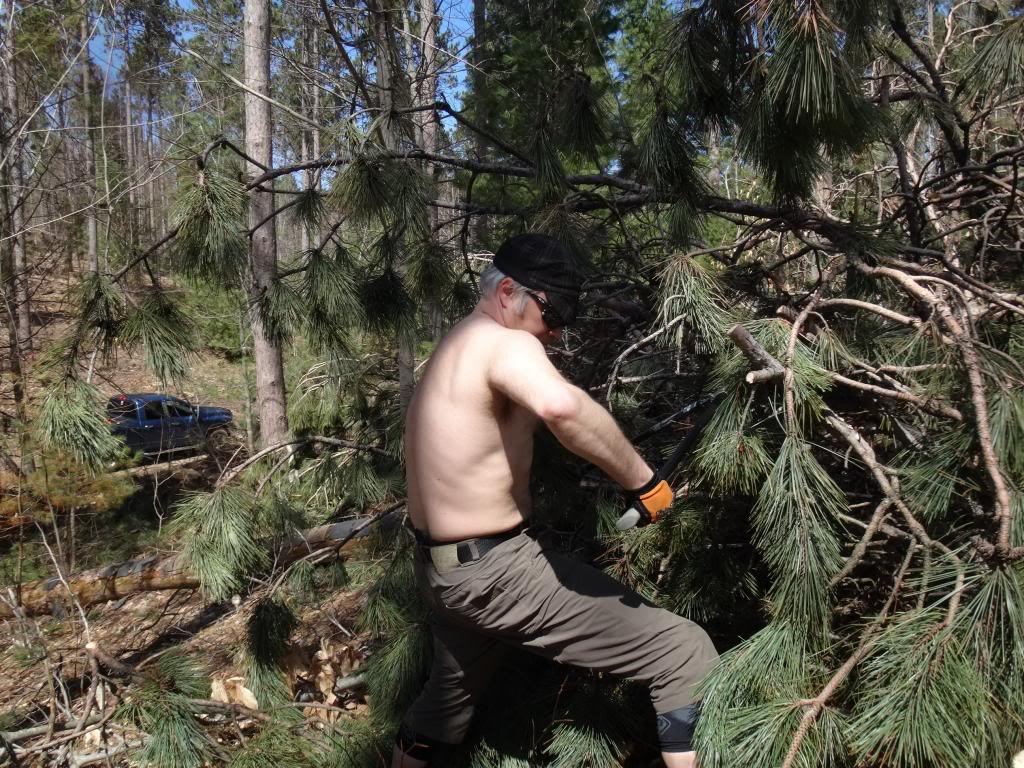 Building trail 2015... tips, tricks and trips-dsc04242_zpsdf56d3a4.jpg