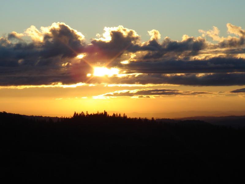 Assignment: Norcal Sunset Photos-dsc04616_small.jpg