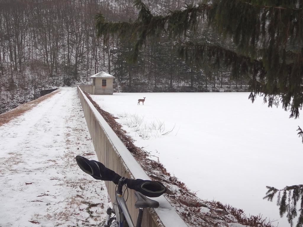 2013 winter riding thread-dsc04619x.jpg