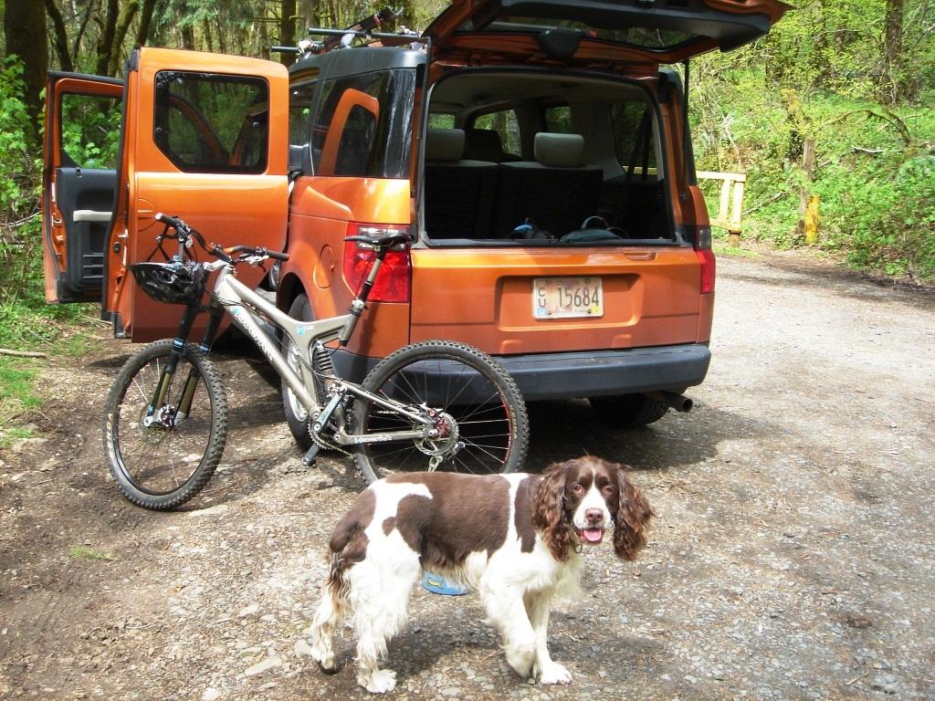 Wilson River Trail-dsc07217.jpg