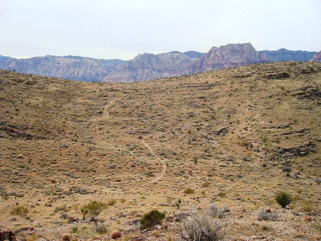 Las Vegas Cowboy Trails: Flat, Wide, Boring......-dsc07497.jpg