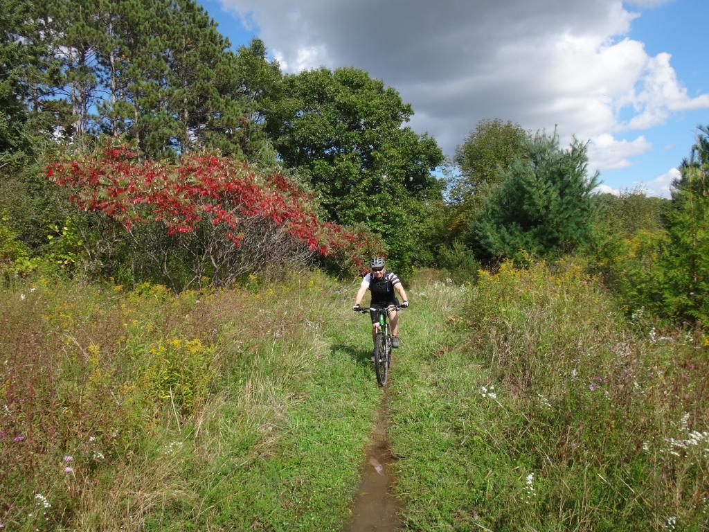 Local Trail Rides-dsc07869_zps6f76bc6a.jpg