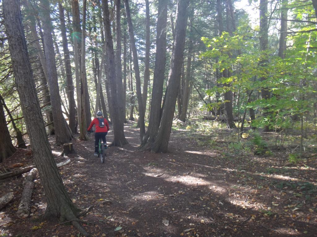 Local Trail Rides-dsc08428_zps696b95db.jpg