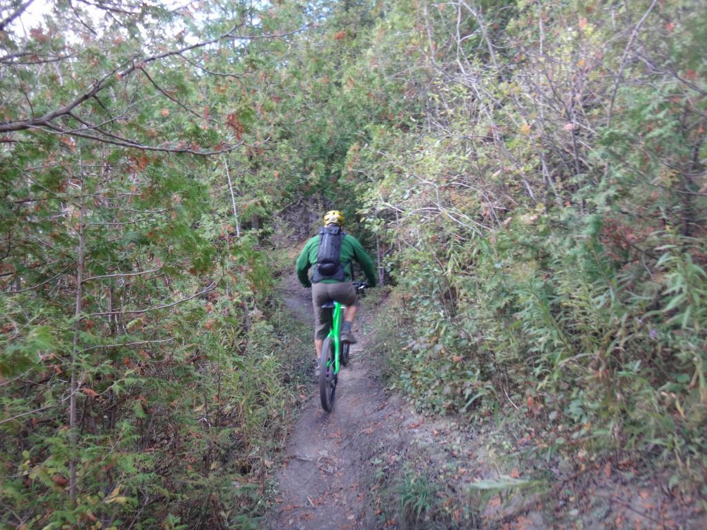 Local Trail Rides-dsc08440_zpsdcfa03f1.jpg