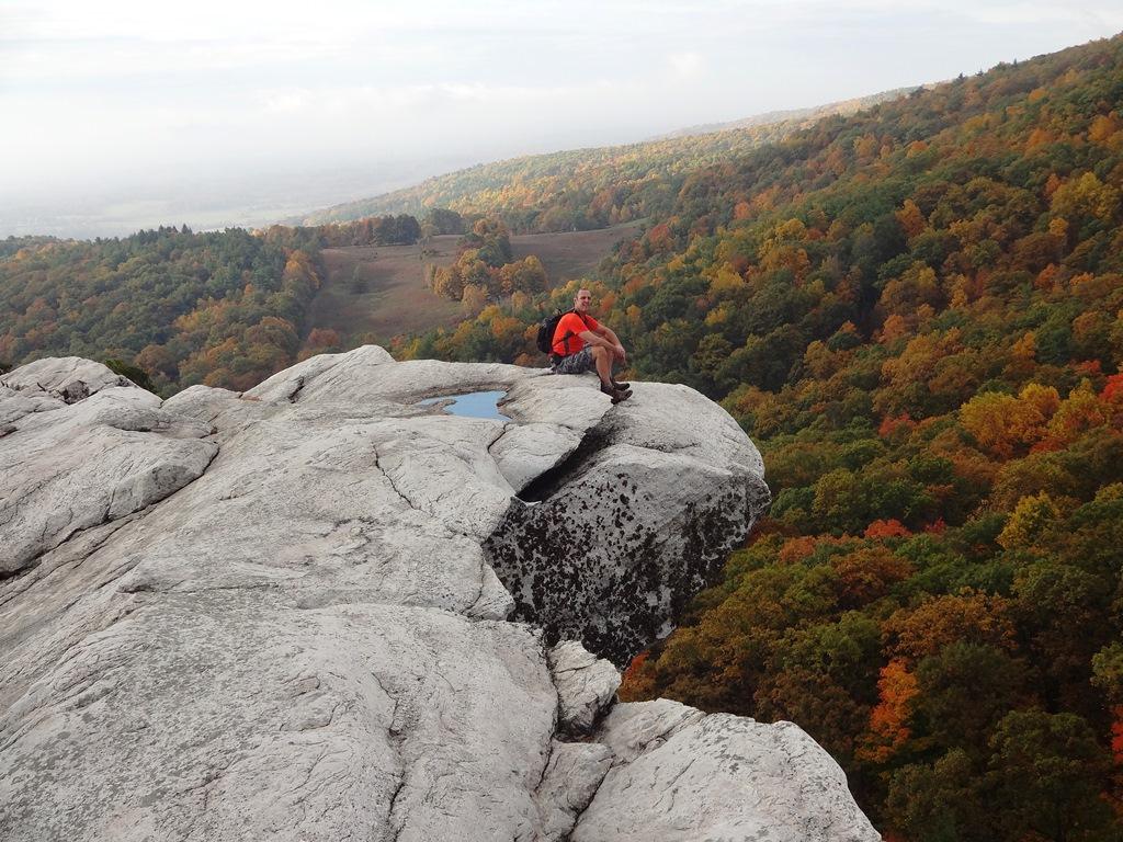 Post Pics of your Fall Foliage!!-dsc08628x.jpg