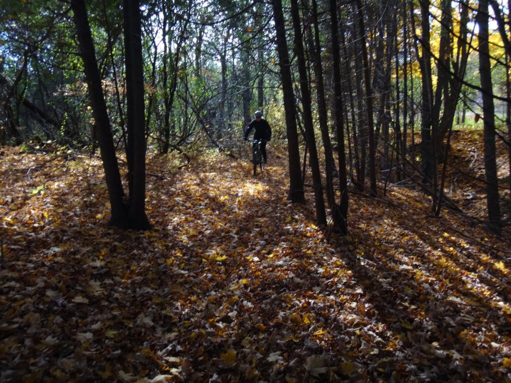 Local Trail Rides-dsc08713_zpsaa0f6403.jpg