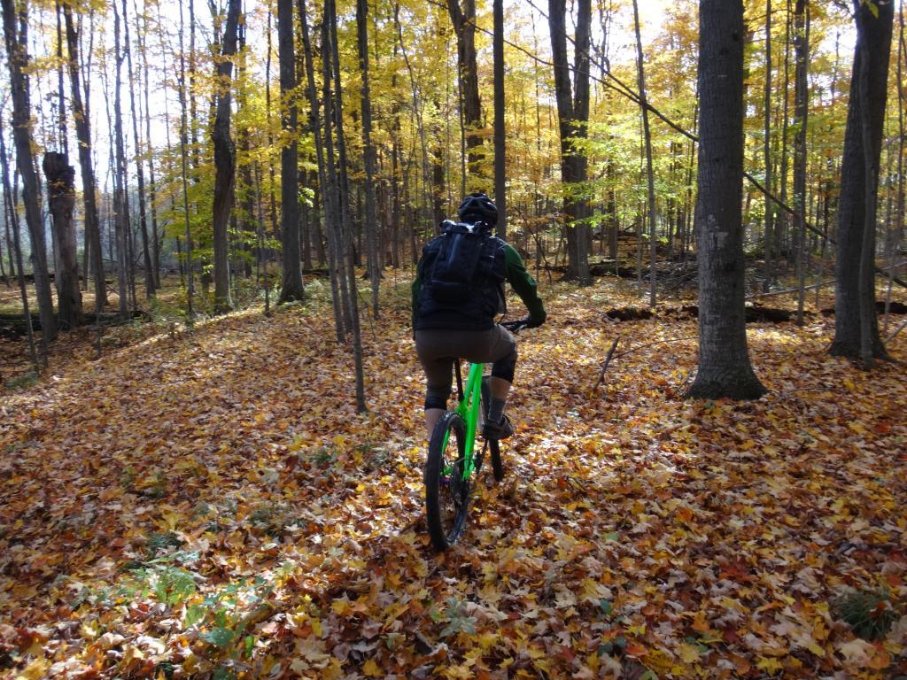 Local Trail Rides-dsc08731_zps6505239c.jpg