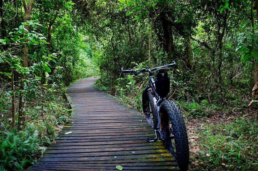 Fat Biking and health-dsc08872.jpg